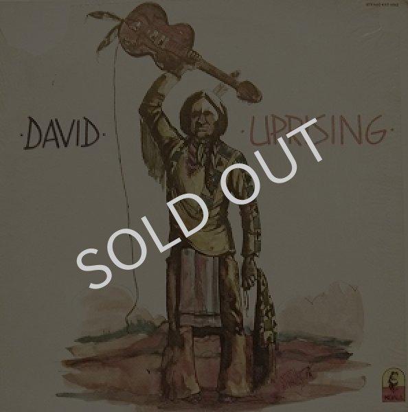画像1: DAVID / UPRISING (1)