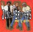 """画像1: JUNGLE BROTHERS - WHAT """"U"""" WATIN' """"4""""? (JUNGLE FEVER EDIT) / PROMO NO. 2 (MIND REVIEW '89)  (1)"""